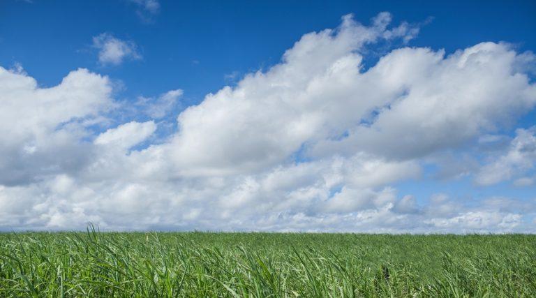 【農地貸款】農地/農舍貸款成數利率、條件流程試算!